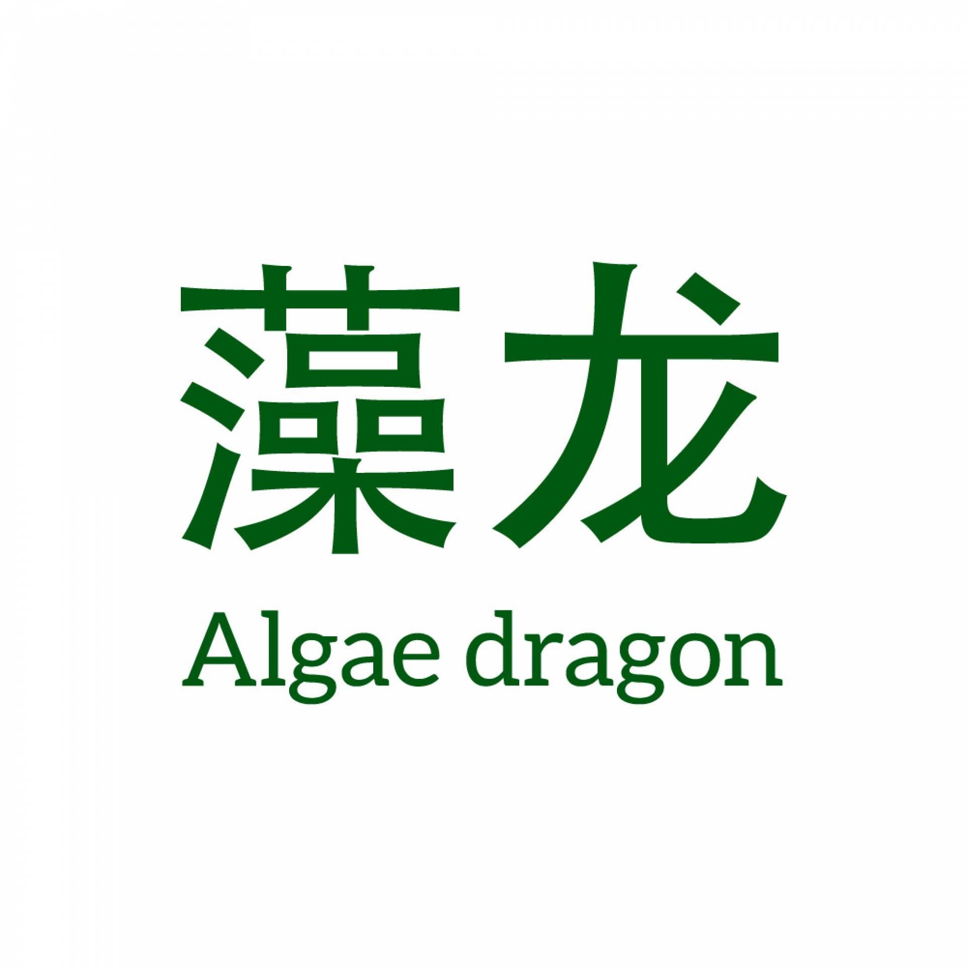Algae Dragon 藻龙